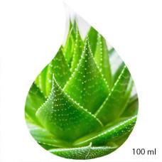 Ulei de Parfum de Aloe Vera 100% 100 ml
