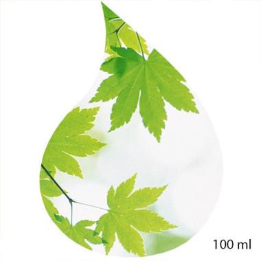 Ulei de Parfum  de GREEN DREAM 100% 100 ml