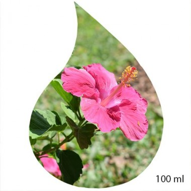 Ulei de Parfum de Hibiscus 100% 100 ml