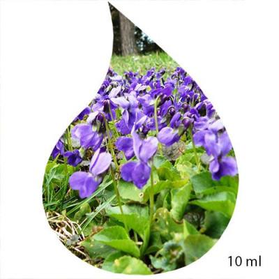 Ulei de Parfum de VIOLET 100% 10 ml